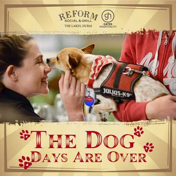 reform dog event dubai